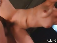 glamorous brunette hair oriental sweetheart sucks