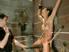 asian serf is fastened and suspended, and taught