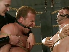 athletic homosexual stud humiliated by perverted