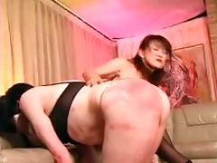 japanese mastix nasuki 2